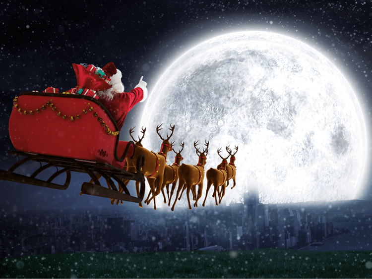Dalziel Park Hotel Lanarkshire Motherwell Christmas
