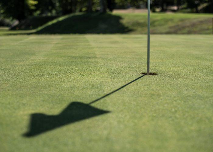 empty-golf-field-meadow-CF6K3PA-min